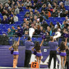 During trying season, market falls for Ravens' personal seat licenses