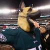 How An NFL Underdog's Tale Gained Bite As A Fast-Selling Eagles T-Shirt