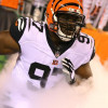 Bengals' latest 'NASCAR' package should give NFL fits in 2018
